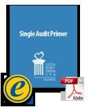 ebook-singleauditprimer