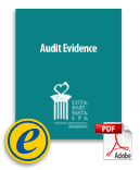 ebook-auditevidence